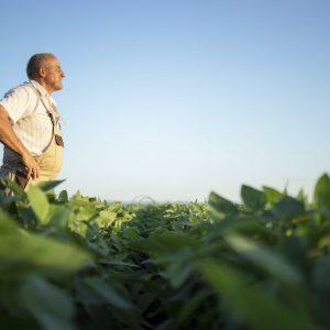 COMUNICADO AOS PRODUTORES RURAIS E AGRICULTORES FAMILIARES