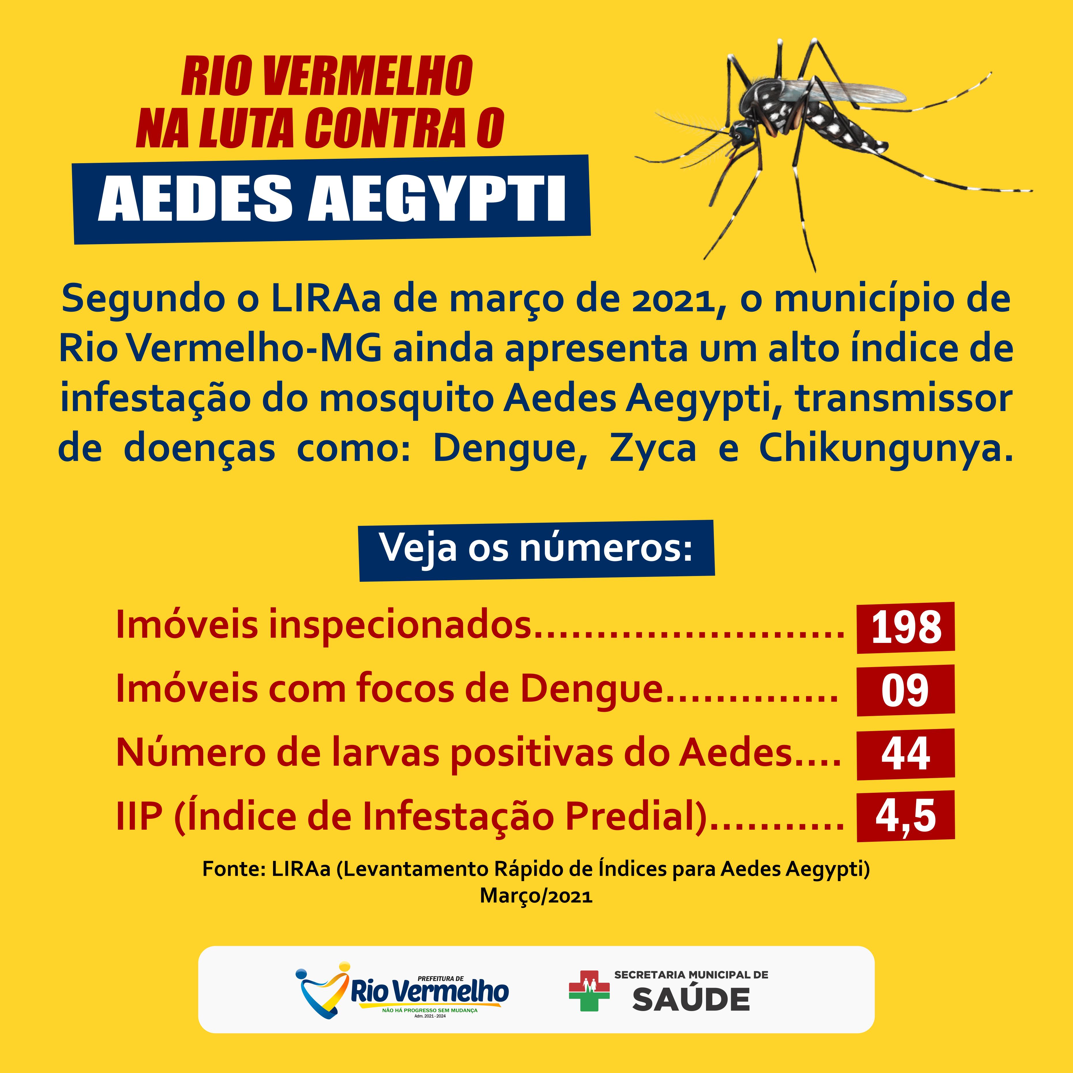 AEDES AEGYPTI: Rio Vermelho têm alto índice de infestação do mosquito